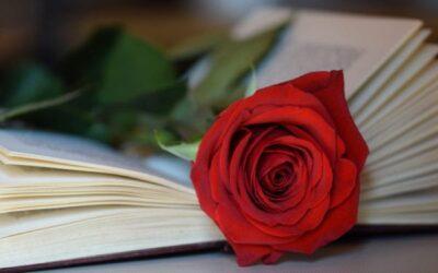 Märchen so alt wie die Zeit: Romantik und die Kernhandlungen der Literatur