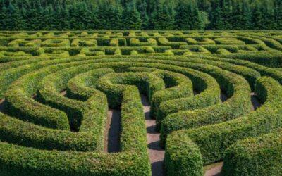 Sich in einem Labyrinth verlieren – und finden